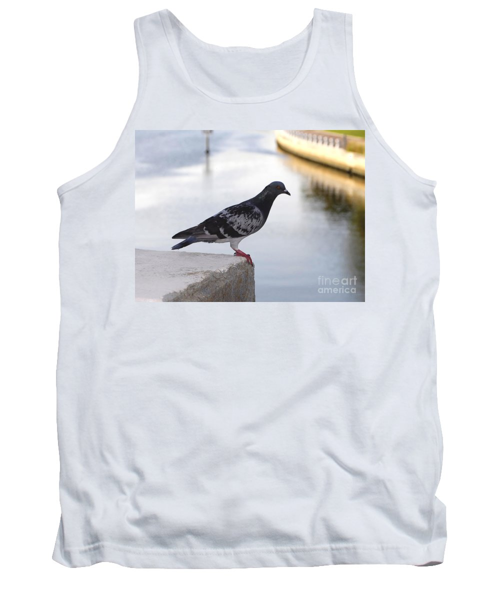 Pigeon Tank Top featuring the photograph Pigeon By The River by David Lee Thompson
