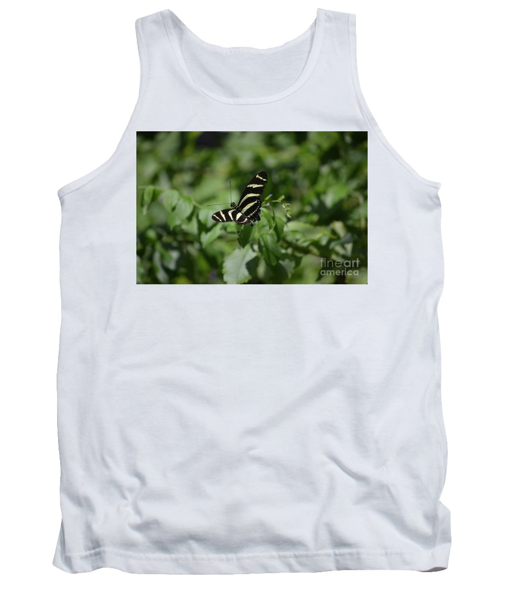 Zebra-butterfly Tank Top featuring the photograph Precious Black And White Zebra Butterfly In The Spring by DejaVu Designs