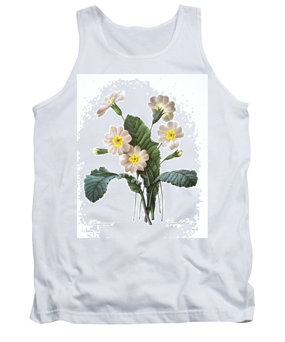 1833 Tank Top featuring the photograph Primrose (primula Aucalis) by Granger