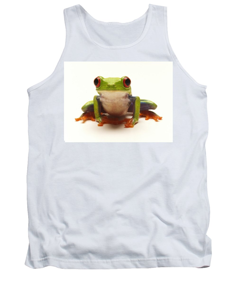 Frog Tank Top featuring the photograph Red-eyed Tree Frog by Steve Williams