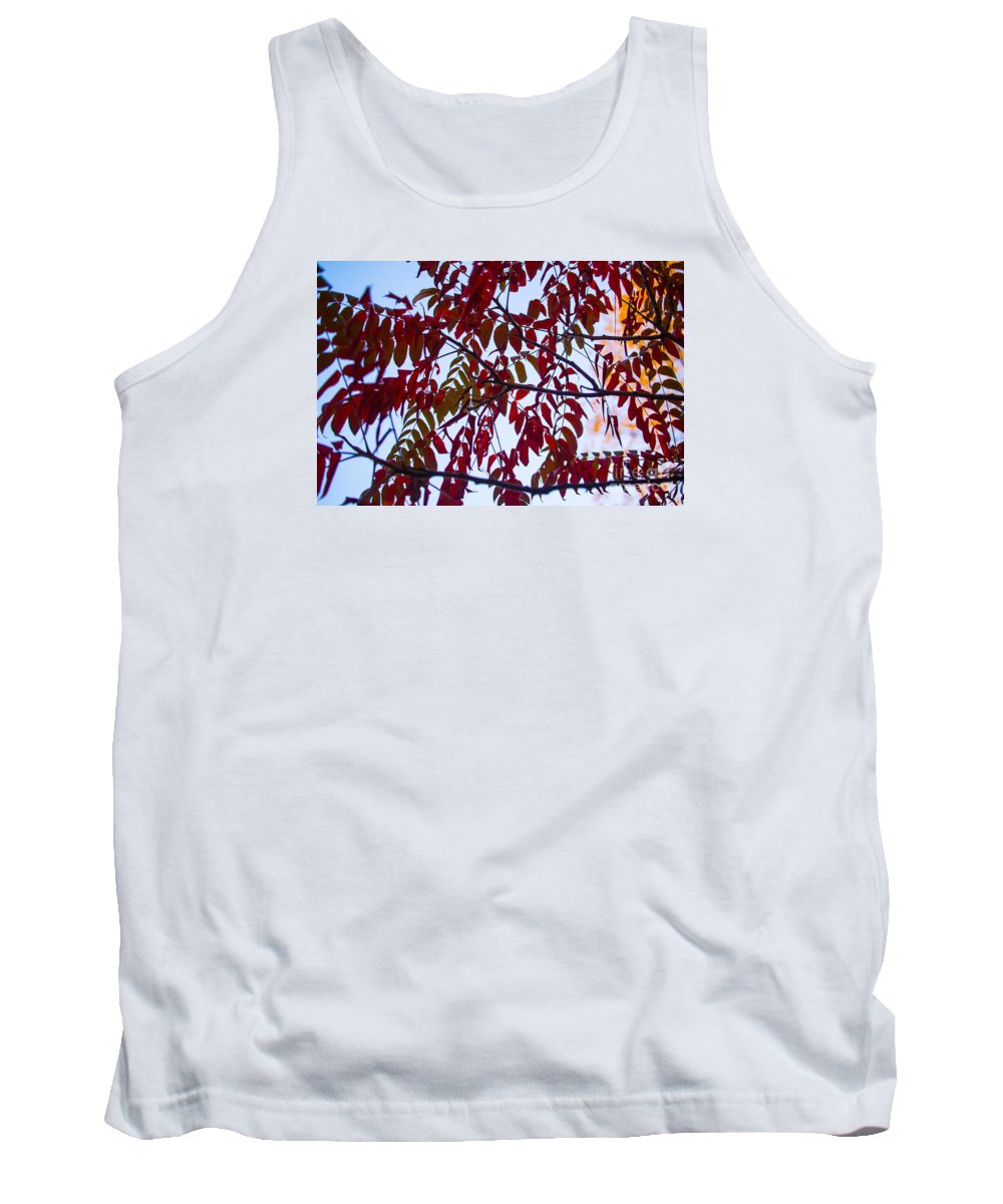Fall Tank Top featuring the photograph Red Fall Colors by Randy Kostichka