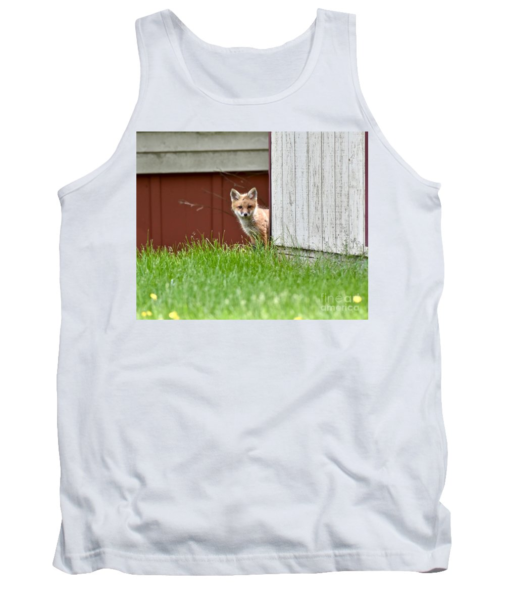 Animal Tank Top featuring the photograph Red Fox Kit Peaking Around Old Barn by Jeramey Lende