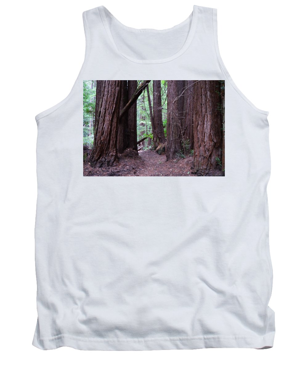Redwood Grove Tank Top featuring the photograph Redwood Grove by Warren Thompson