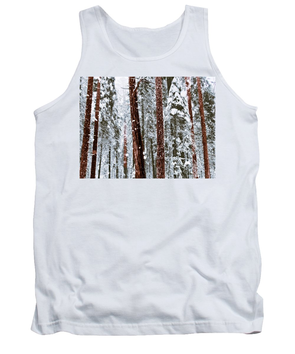 Landscape Tank Top featuring the photograph Redwoods In Snow by Karen W Meyer