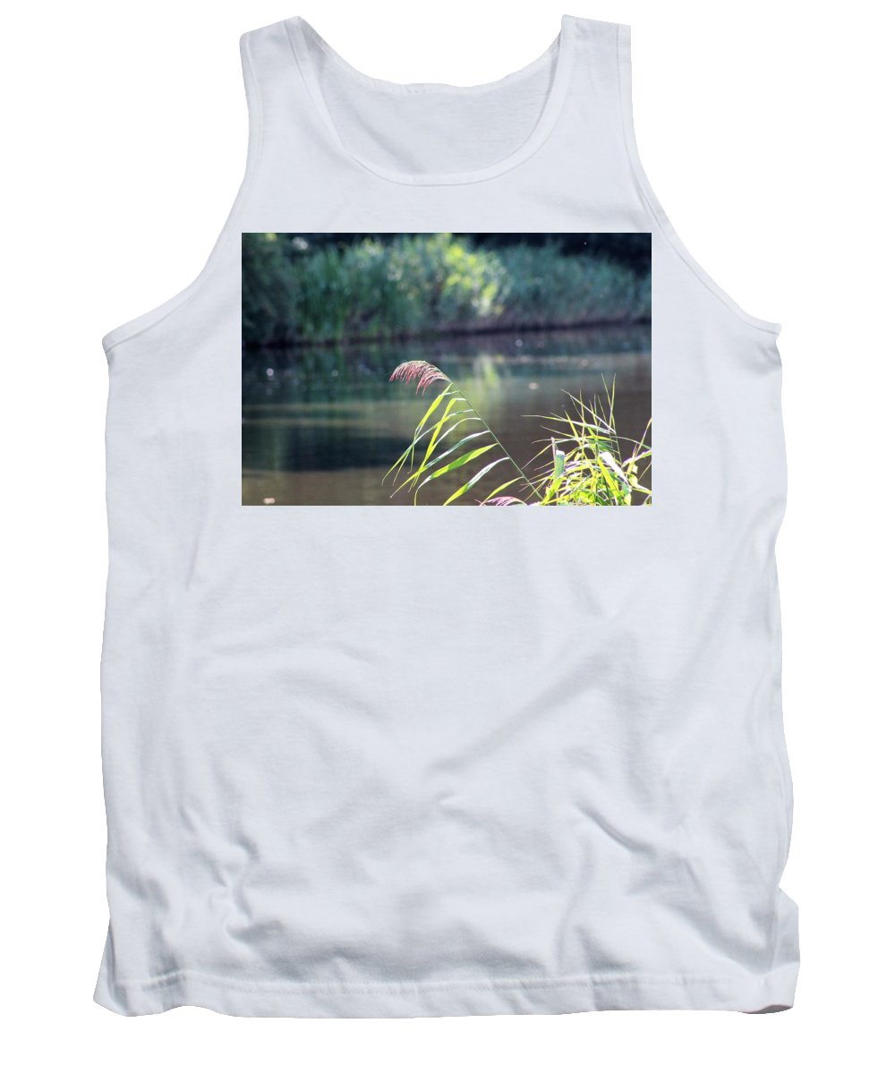 Reed Tank Top featuring the photograph Reed by Barend Van Wieringen