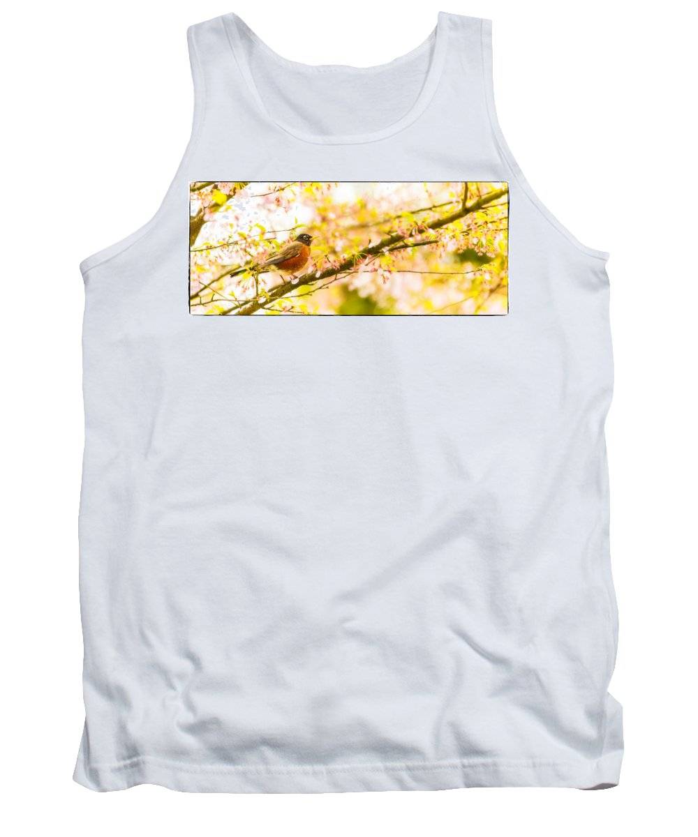 Animal Tank Top featuring the photograph Robin In Spring Blossom Cherry Tree by Peter v Quenter