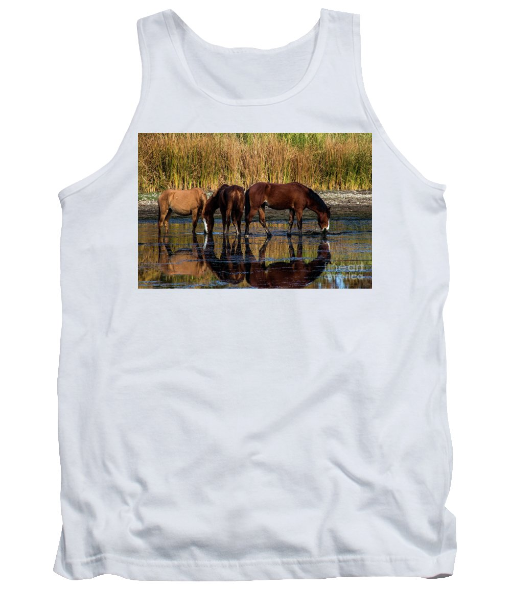 Arizona Tank Top featuring the photograph Salt River Horses by Kathy McClure
