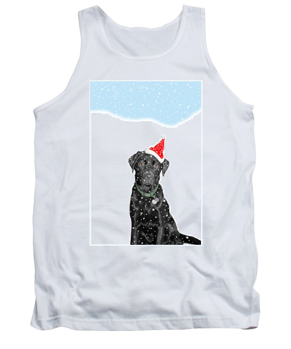 Christmas Tank Top featuring the photograph Santa Dog In The Snow by Mal Bray