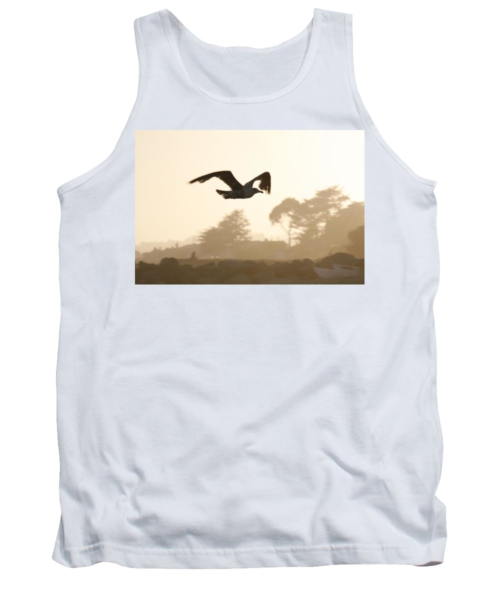 Bird Tank Top featuring the photograph Seagull Sihlouette by Marilyn Hunt