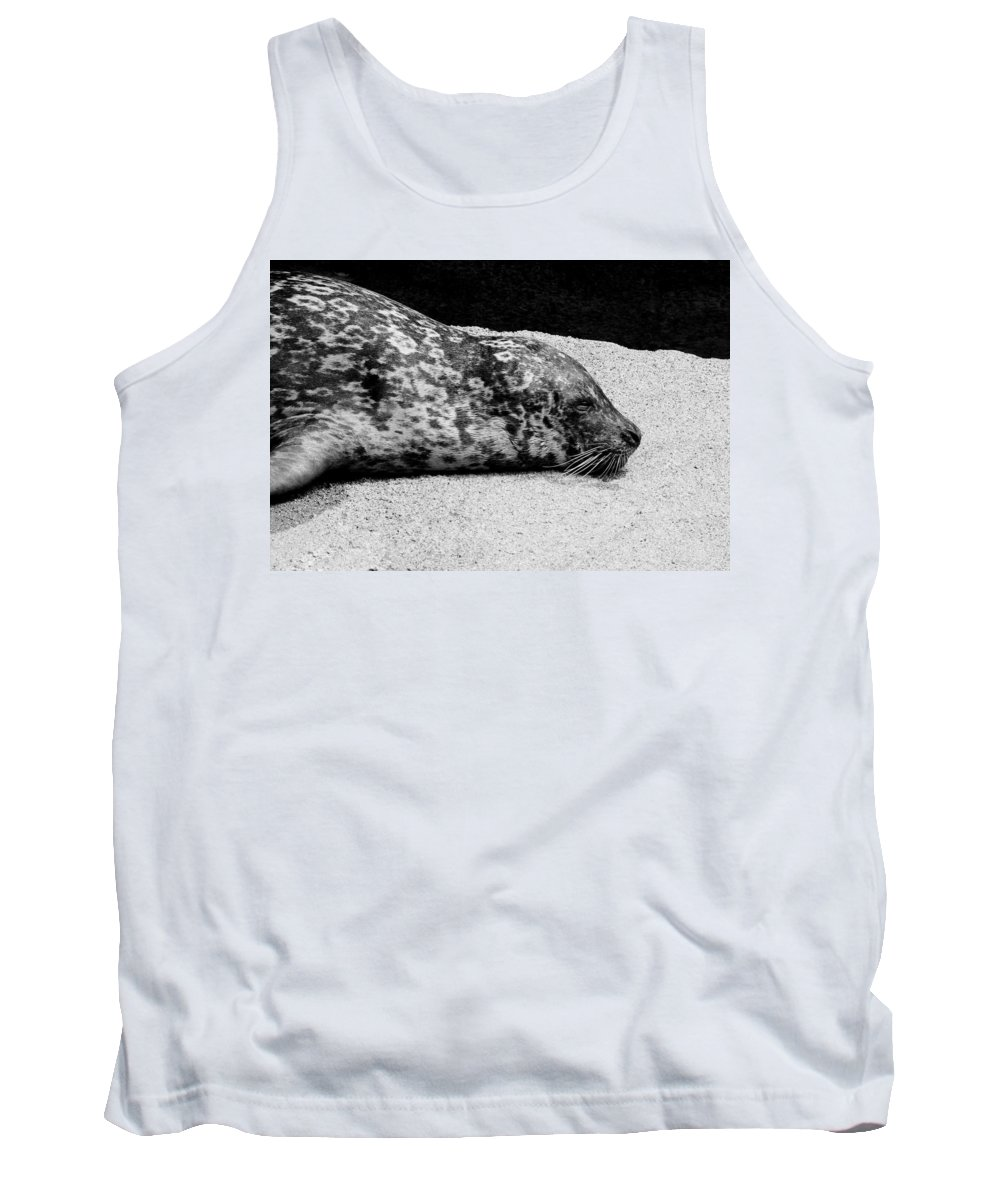 Seal Tank Top featuring the photograph Seal by Steven Natanson