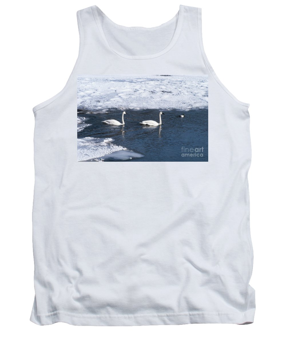 Yellowstone National Park Tank Top featuring the photograph Snow Geese On The Move by Bob Phillips