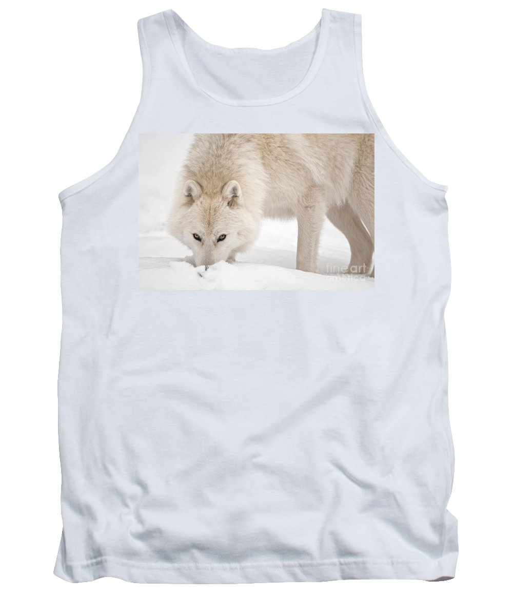 Michael Cummings Tank Top featuring the photograph Snow Nose by Michael Cummings