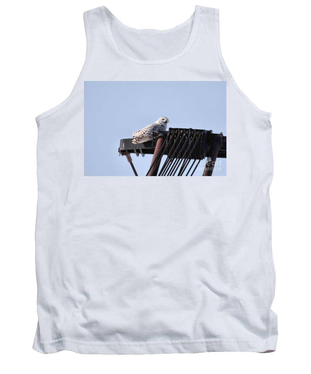 Snowy Owl Tank Top featuring the photograph Snowy Owl 2959 by Joseph Marquis