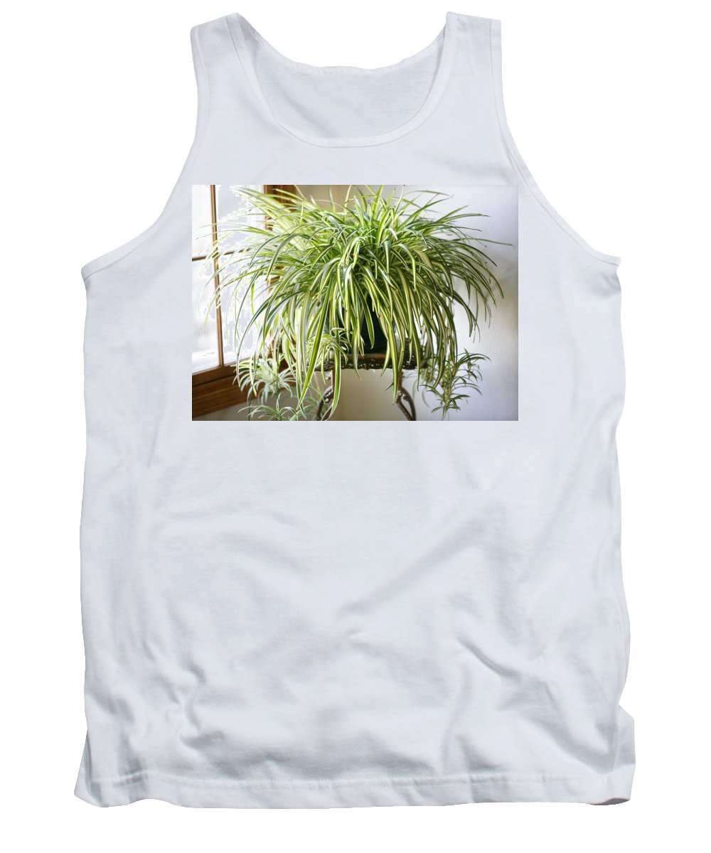 Spider Plant Tank Top featuring the photograph Spider Plant by Marilyn Hunt
