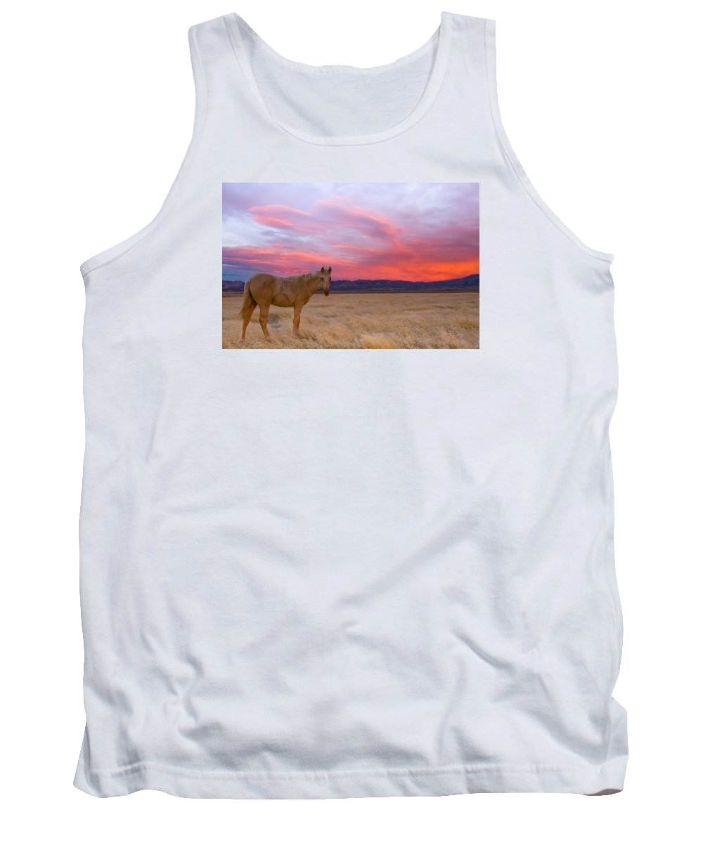 Wild Horse Tank Top featuring the photograph Sunset Filly by Kent Keller