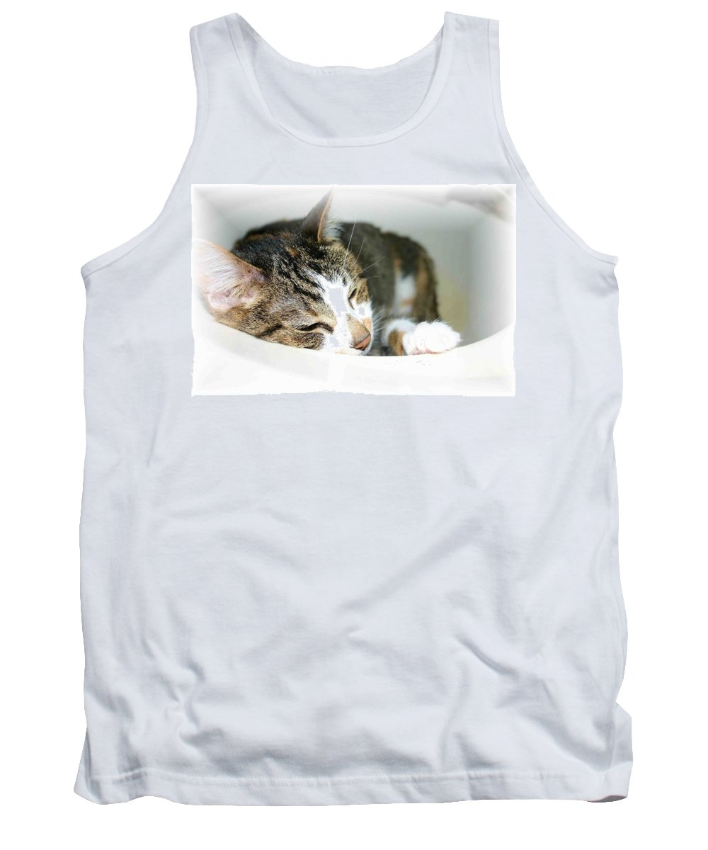 Cat Tank Top featuring the photograph Sweet Dreams by Nelson Strong