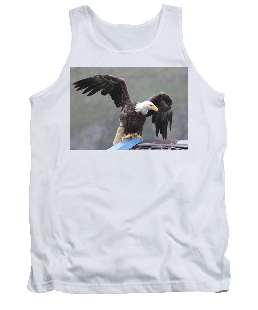 Eagle Charlie's Roof Wings Spread Tank Top featuring the photograph Taking Flight by Jean Barbour