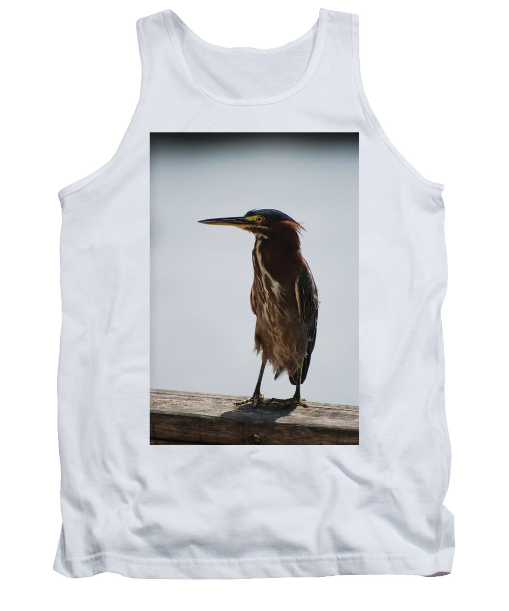 Birds Tank Top featuring the photograph The Bird by Rob Hans