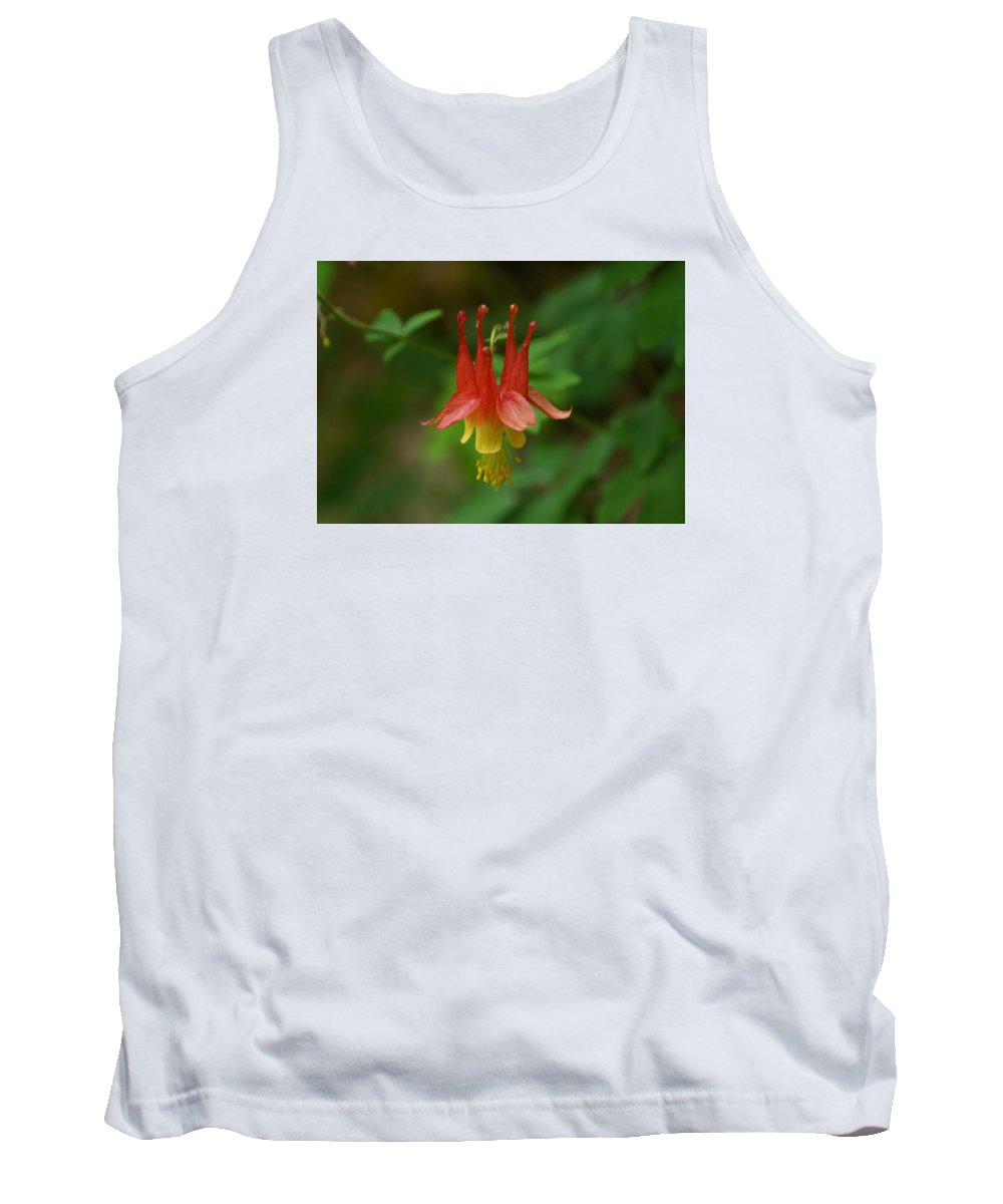 Ann Keisling Tank Top featuring the photograph The Columbine by Ann Keisling