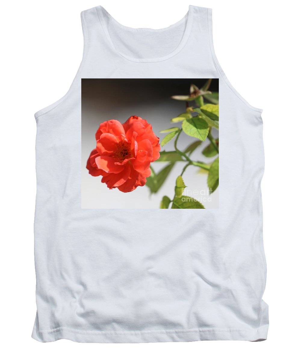 Rose Tank Top featuring the photograph The Coral Rose by Diann Fisher