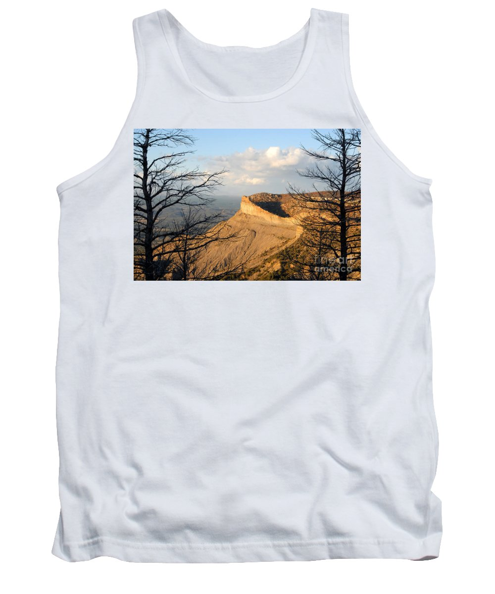 Mesa Tank Top featuring the photograph The Great Mesa by David Lee Thompson