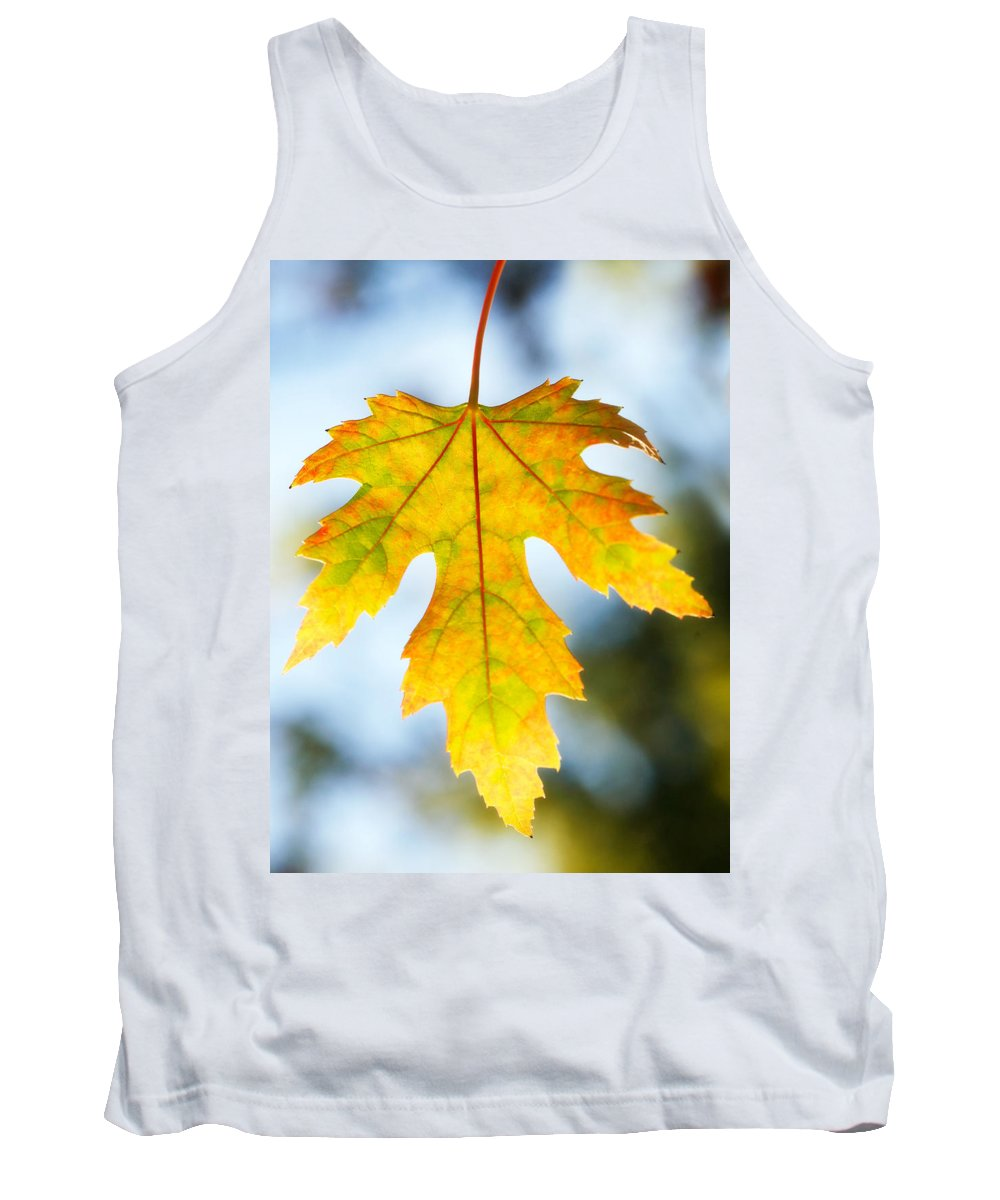 Maple Tank Top featuring the photograph The Maple Leaf by Marilyn Hunt