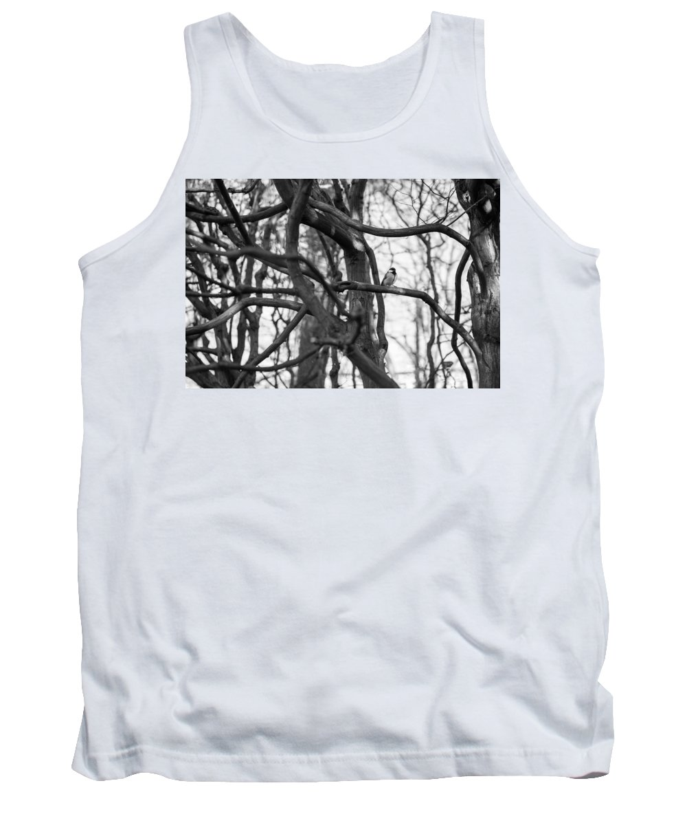 Tit Tank Top featuring the photograph Tit Bird Perching On Tree by Focus Fotos