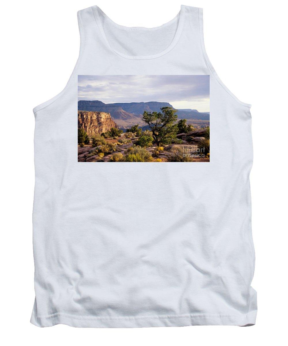 Arizona Tank Top featuring the photograph Toroweap by Kathy McClure