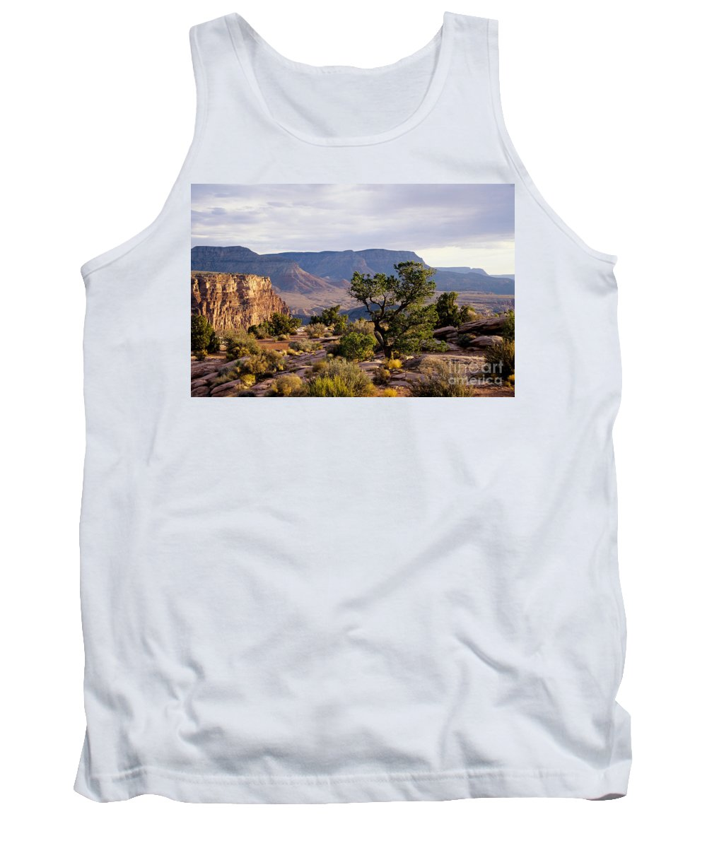 Arizona Tank Top featuring the photograph Toroweap by Kathy McClure