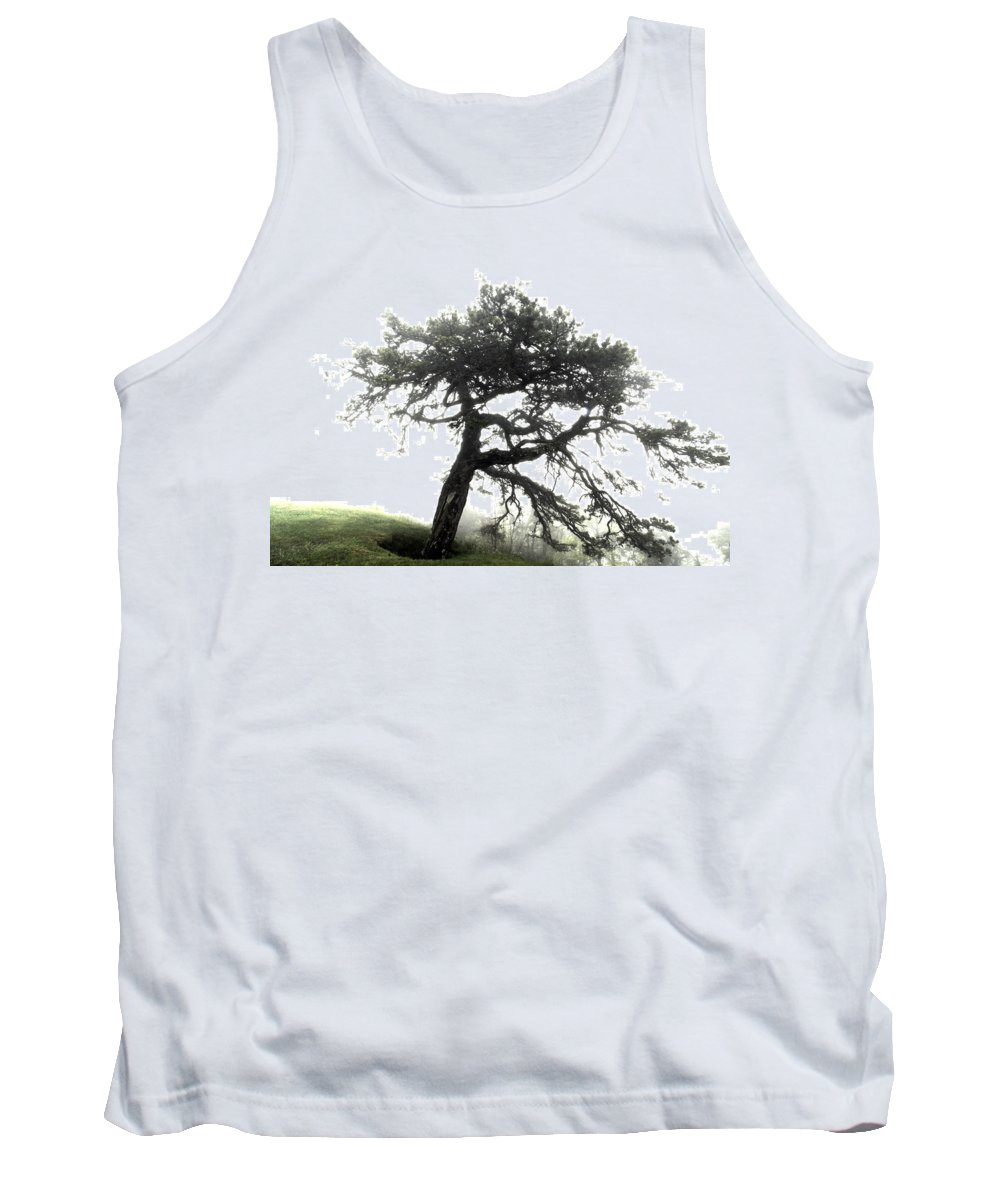 Hdr Tank Top featuring the photograph Tree by Alex Grichenko