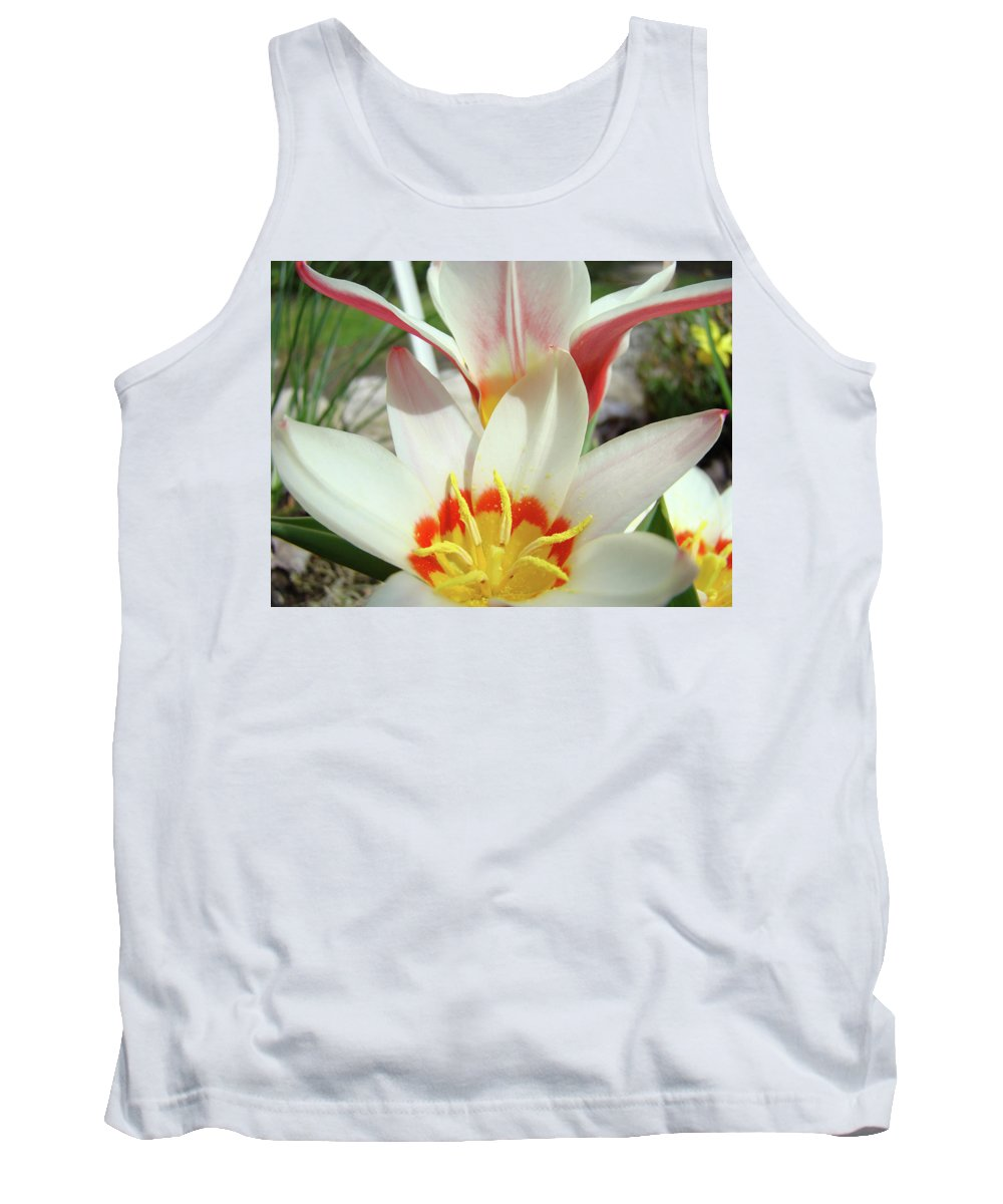 �tulips Artwork� Tank Top featuring the photograph Tulips Flowers Artwork 1 Tulip Flower Art Prints Spring Floral Art White Tulips Garden by Baslee Troutman