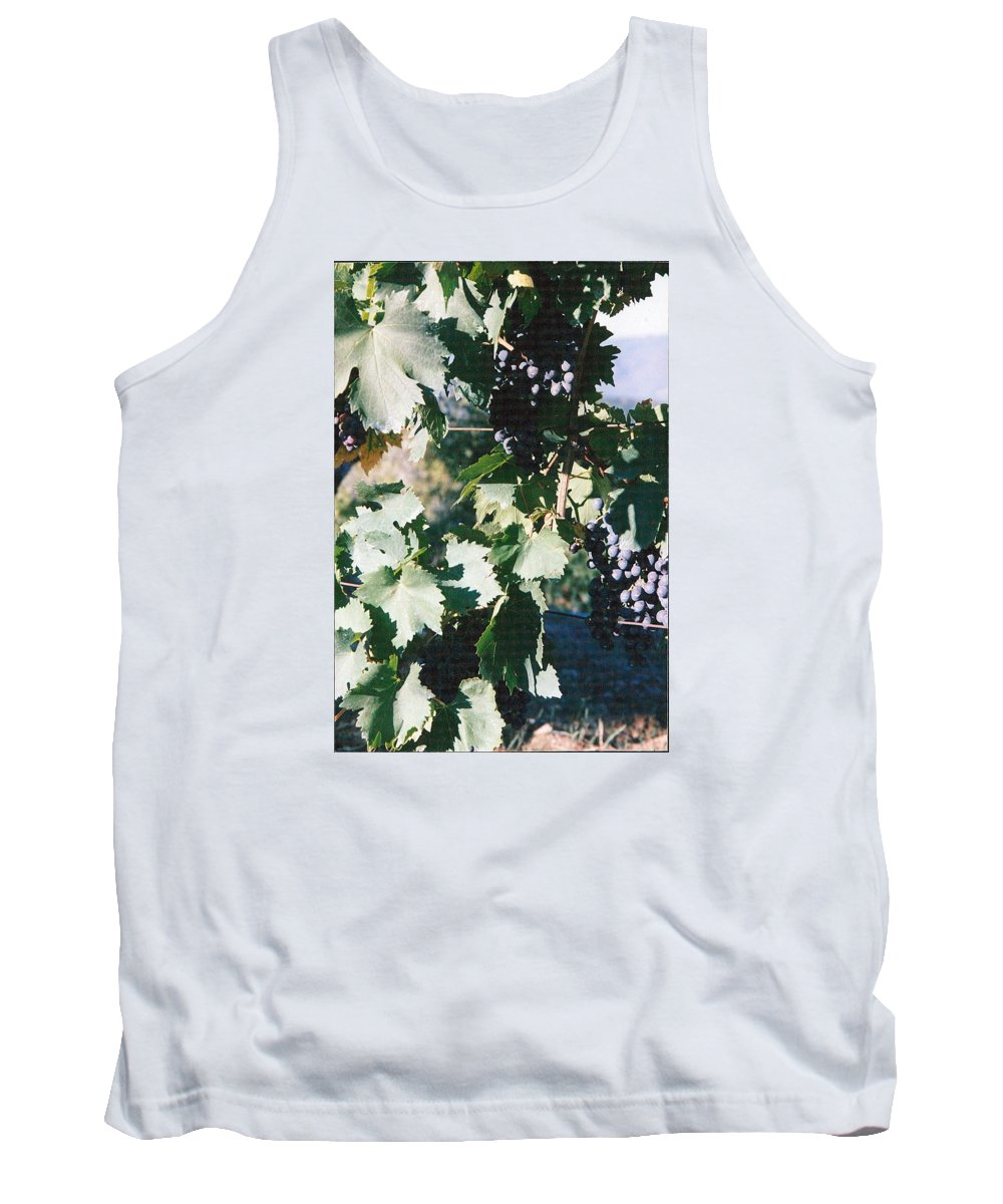 Italy Tank Top featuring the photograph Tuscan Grapes Photograph by Kimberly Walker