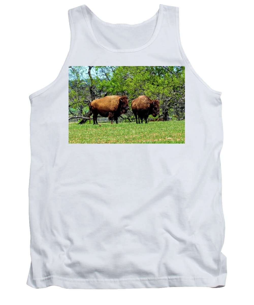 Texas Tank Top featuring the photograph Two Buffalo by Marilyn Burton