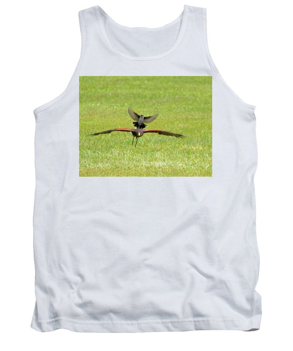 Raptor Tank Top featuring the photograph Under Attack by Erin O'Neal-Morie