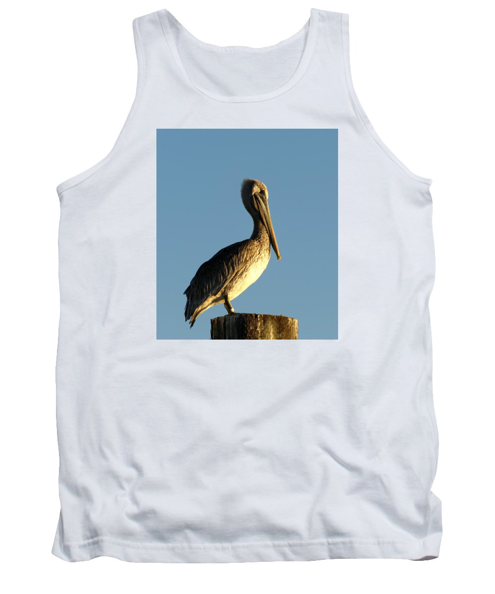 Ann Keisling Tank Top featuring the photograph Waiting For Sunset by Ann Keisling