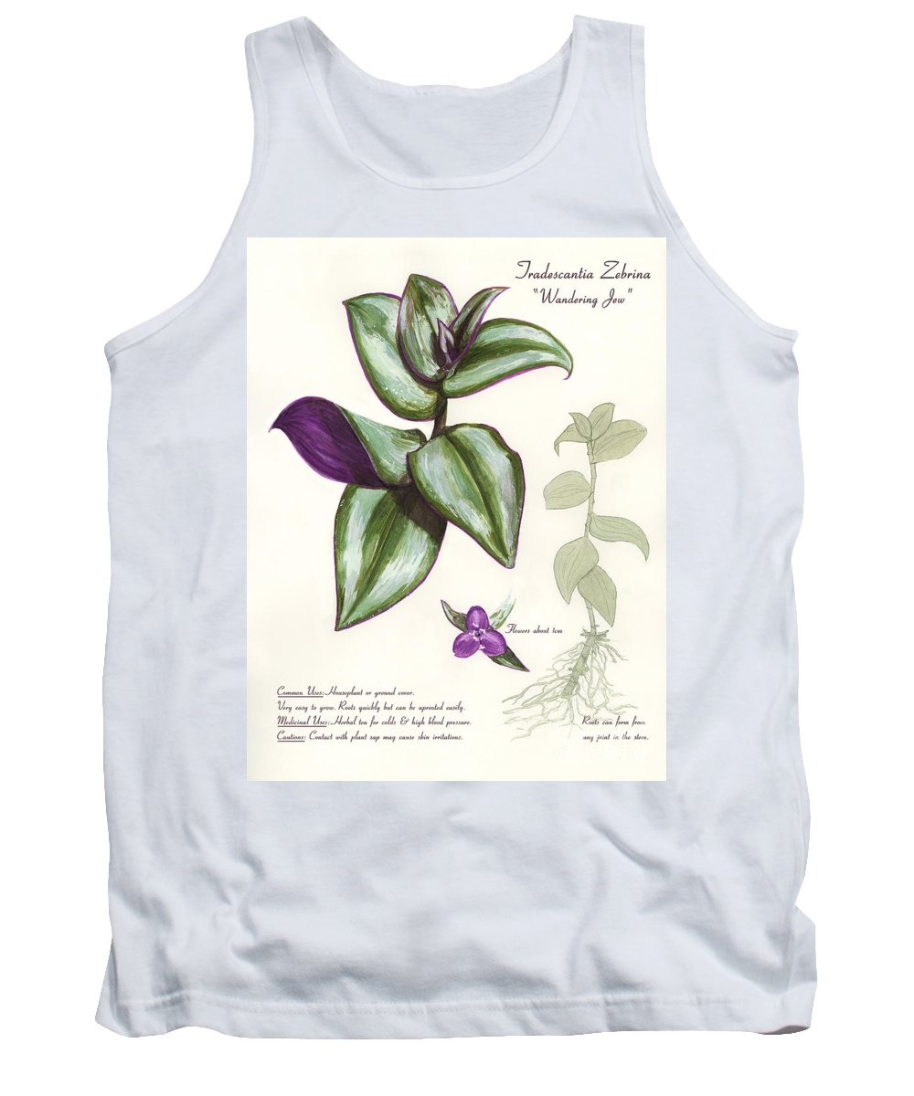 Plant Tank Top featuring the painting Wandering Jew - Tradescantia Zebrina by Brandy Woods