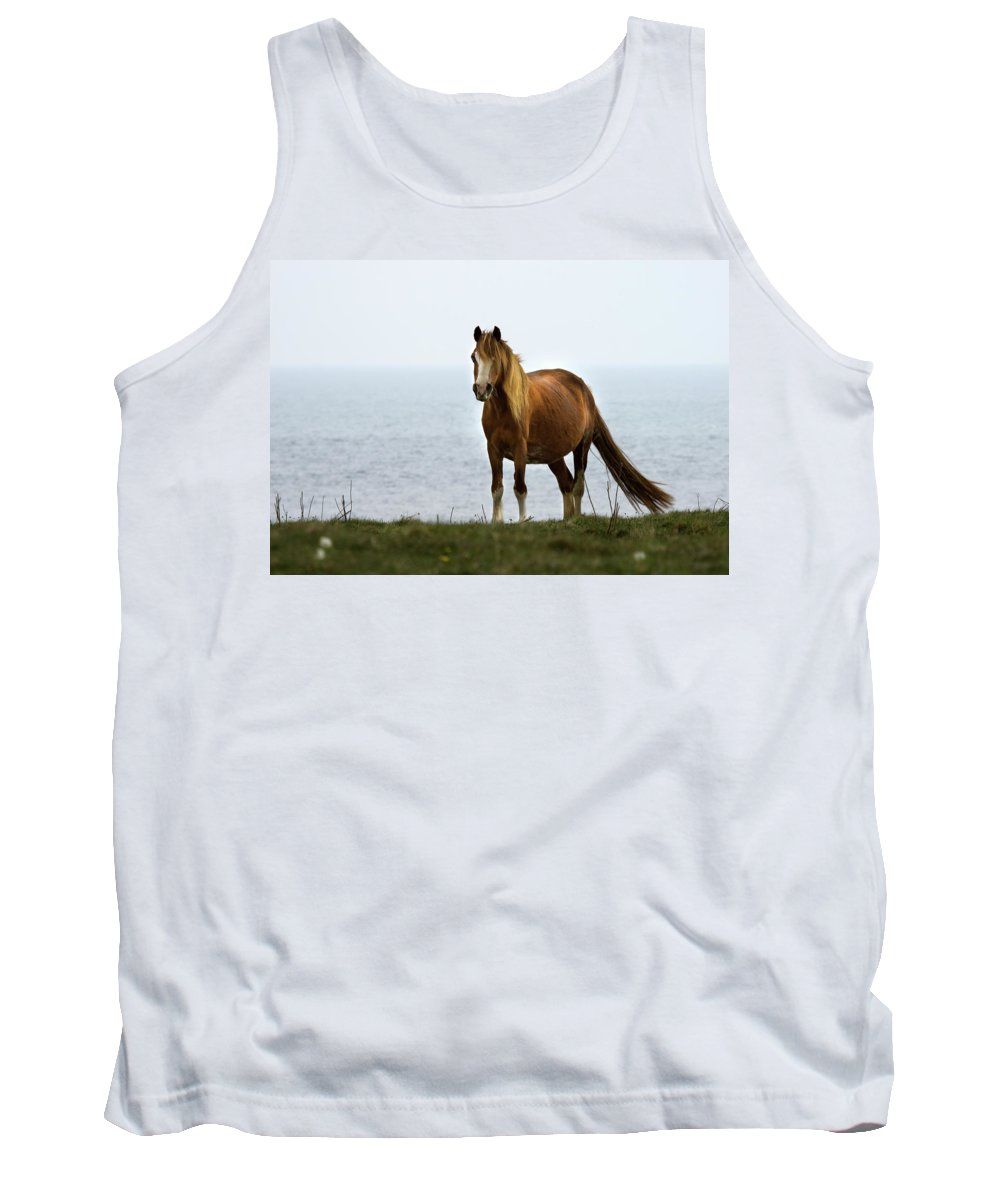 Horse Tank Top featuring the photograph Welsh Pony by Angel Ciesniarska