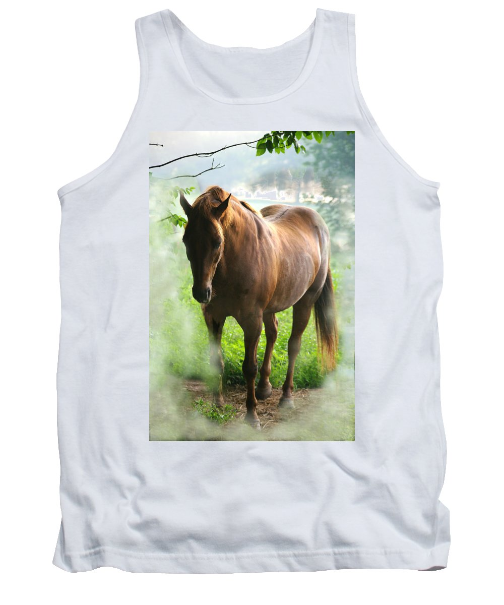Jenny Gandert Tank Top featuring the photograph When You Dream Of Horses by Jenny Gandert