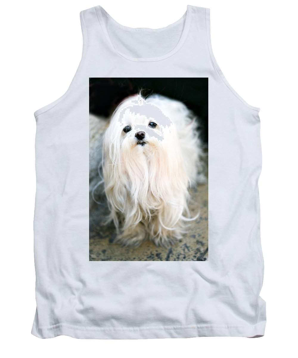 Small Tank Top featuring the photograph White Fluff by Marilyn Hunt