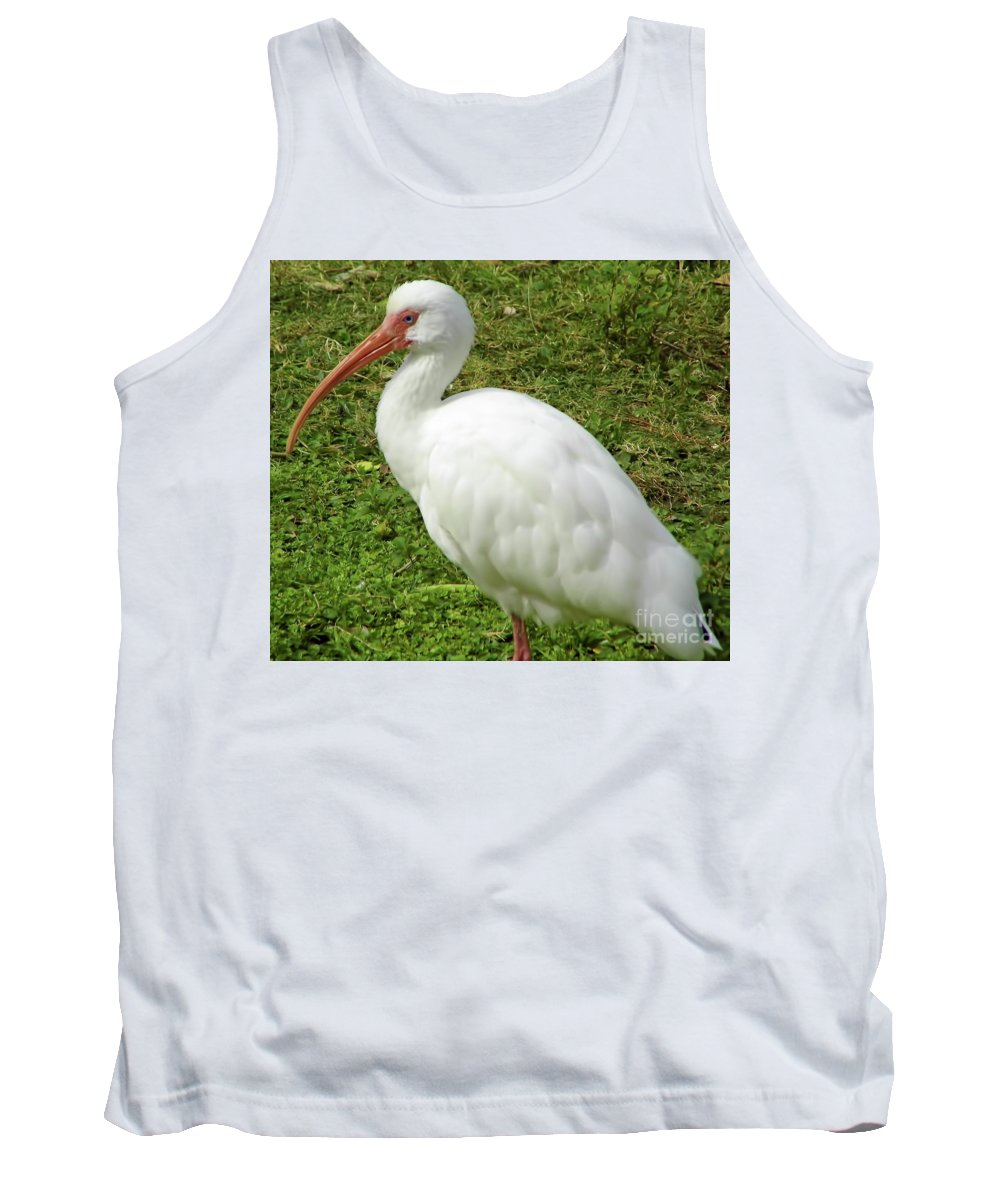 Ibis Tank Top featuring the photograph White Ibis by D Hackett