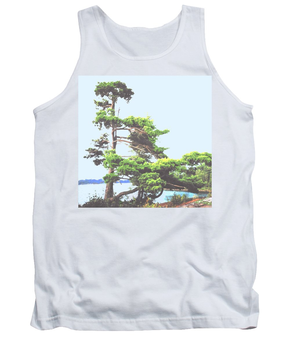 Pine Tank Top featuring the photograph Windswept by Ian MacDonald
