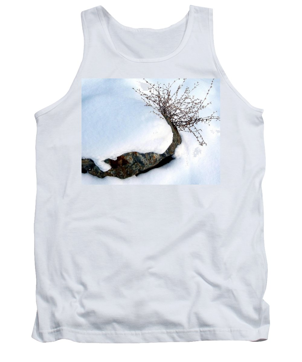 Winter Tank Top featuring the photograph Winter Finery by Will Borden