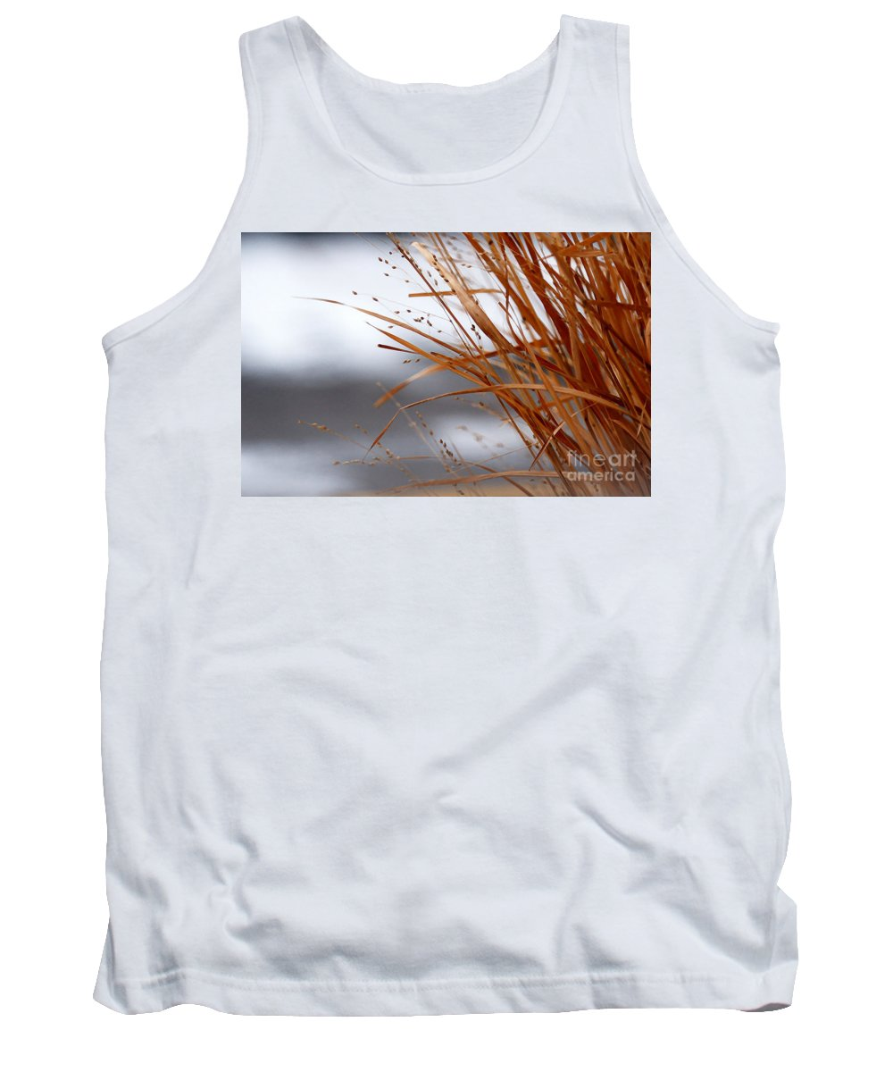 Grass Tank Top featuring the photograph Winter Grass - 2 by Linda Shafer