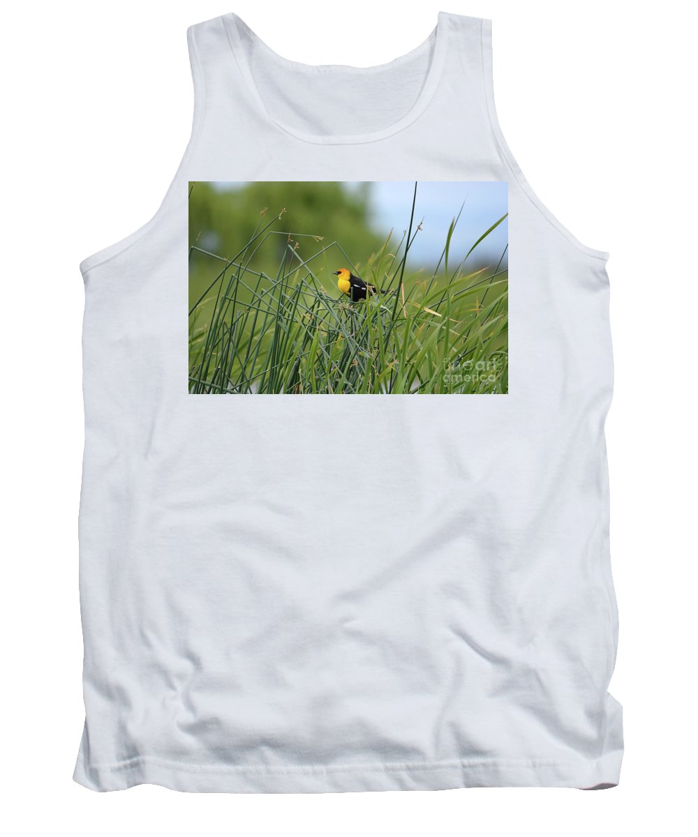 Deanna Cagle Tank Top featuring the photograph Yellow-headed Blackbird by Deanna Cagle