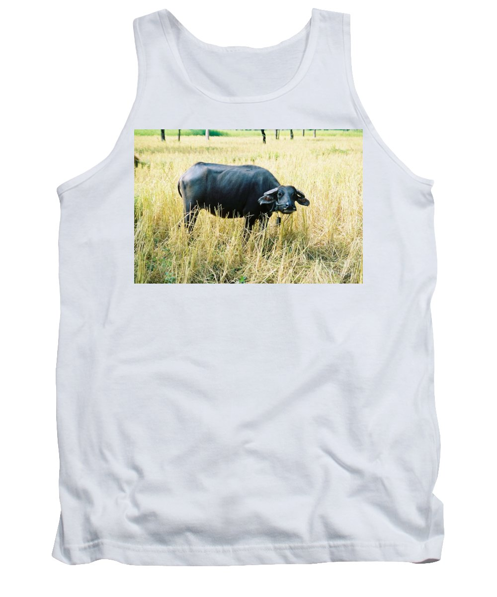 Water Buffalo Tank Top featuring the photograph You Lookin At Me by Mary Rogers
