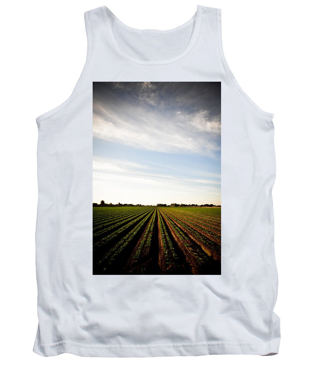 Lettuce Tank Top featuring the photograph Yuma Fields by Scott Sawyer