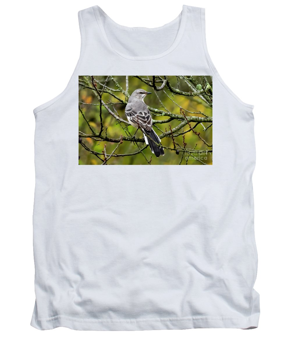 Milford Point Tank Top featuring the photograph Mockingbird In Tree by Michael D Miller