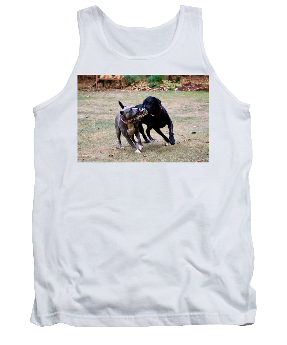 Dogs Tank Top featuring the photograph Tug O War by Dani Keating