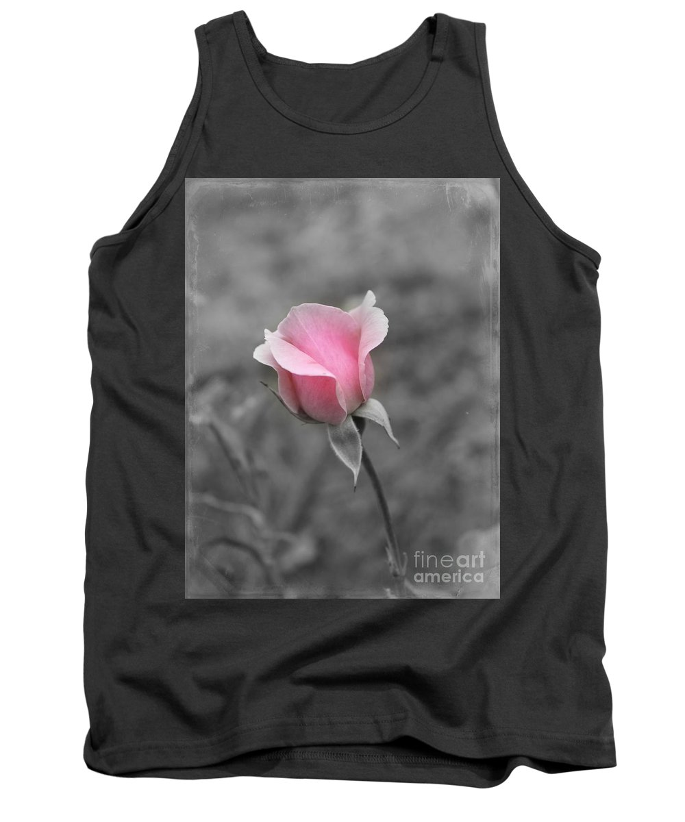 Pink Rose Tank Top featuring the photograph A Hint Of Pink by Clare Bevan