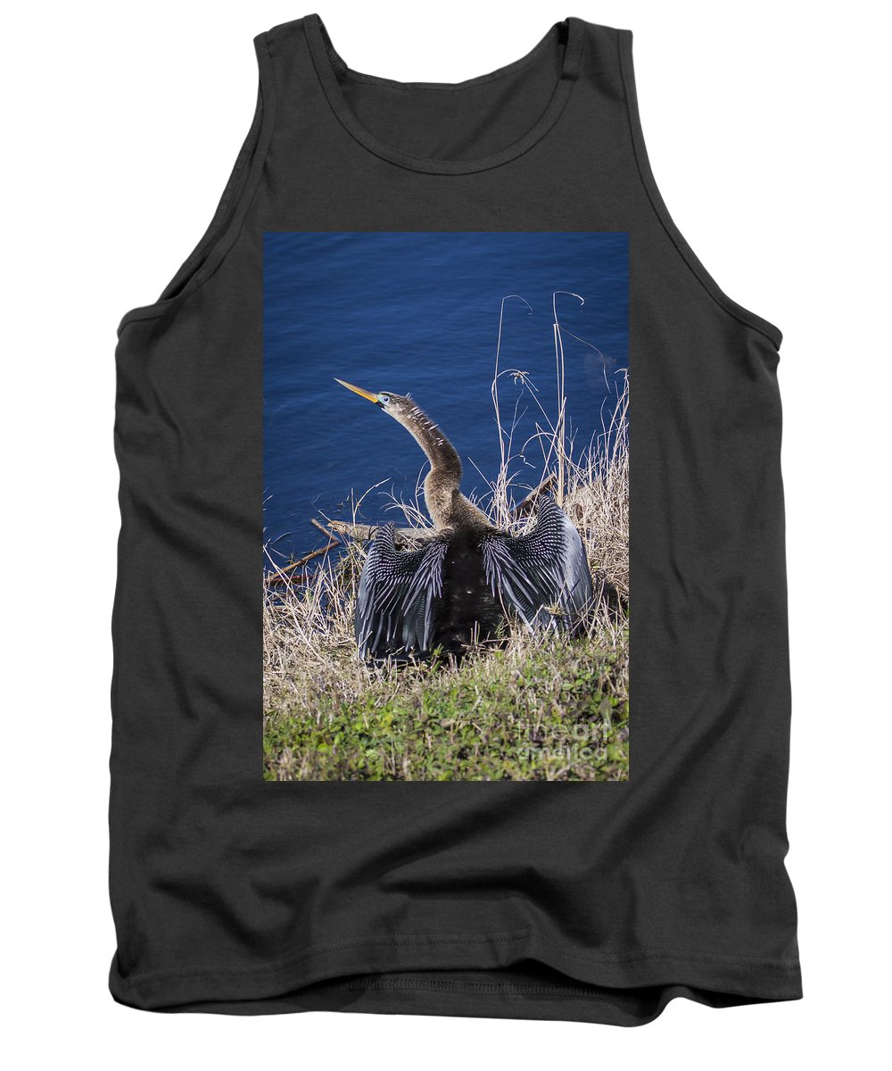 Adult Tank Top featuring the photograph Anhinga by Ronald Lutz